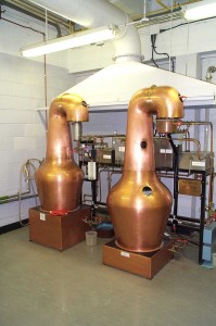 Experimental stills at the ICBD